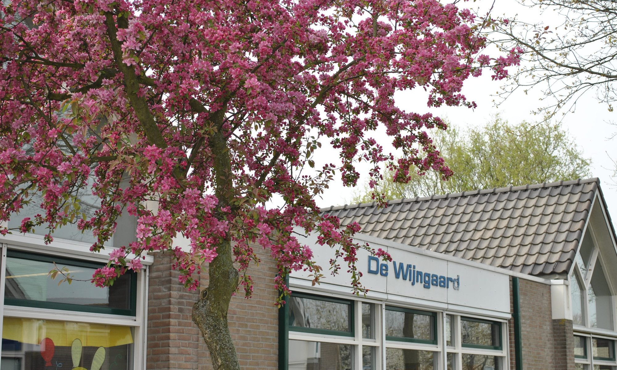 Samenwerking in Toolenburg-West